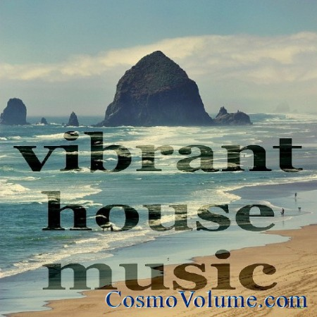 Vibrant House Music (Deeper Minitech Compilation) [2011]