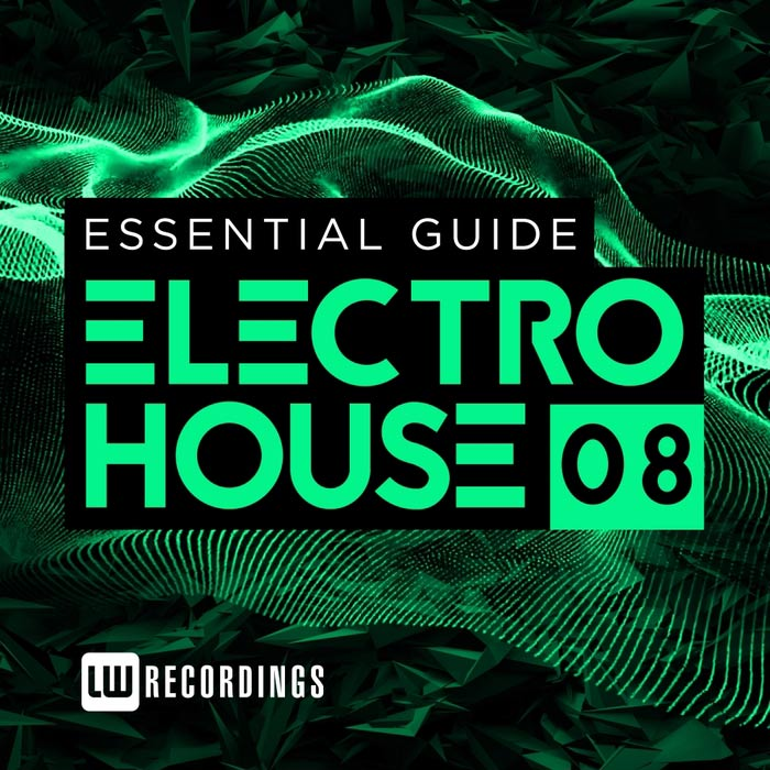 Essential Guide: Electro House (Vol. 8) [2016]