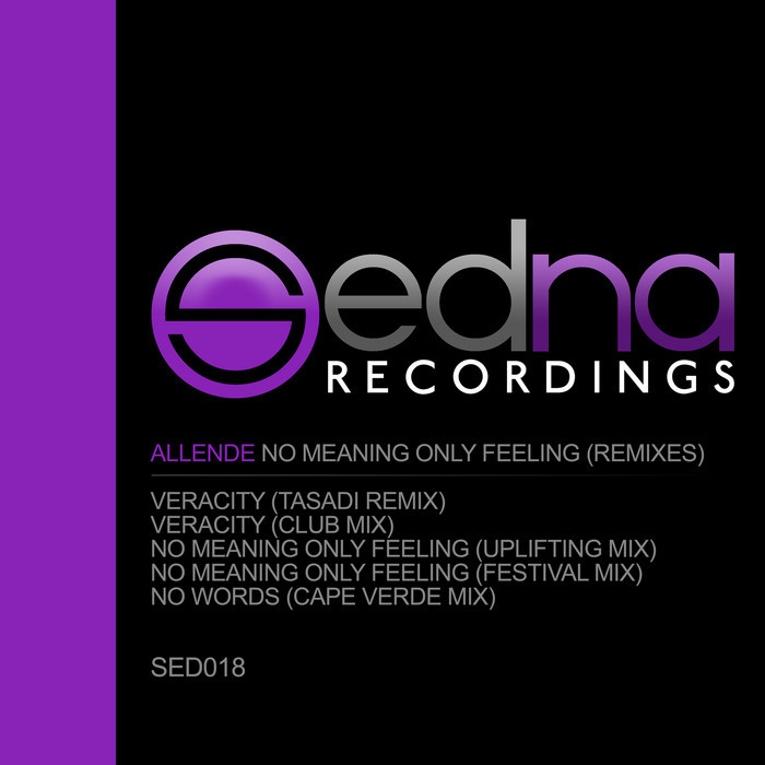 Allende - No Meaning Only Feeling [2013]