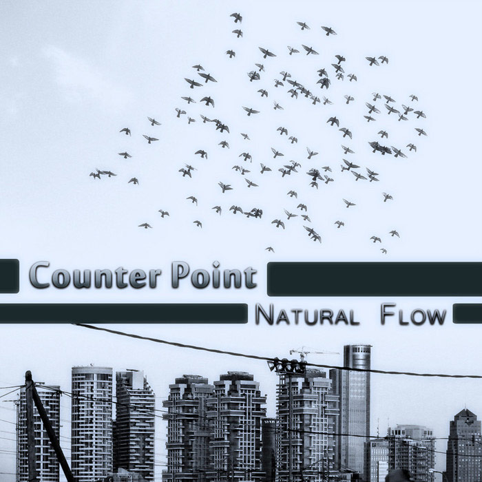 Counter Point - Natural Flow [2011]