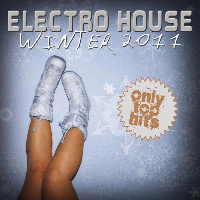 Electro House Winter 2011 [2011]