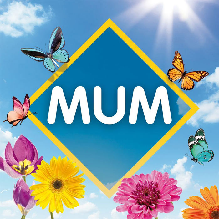 Mum: The Collection [2017]