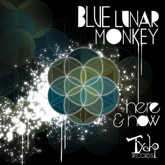 Blue Lunar Monkey - Here and Now [2011]
