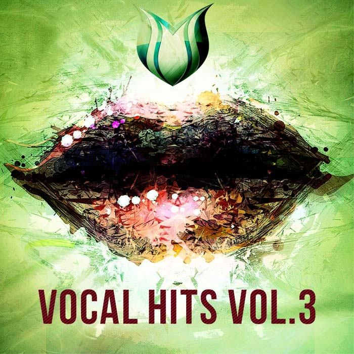 Vocal Hits (Vol. 3) [2017]