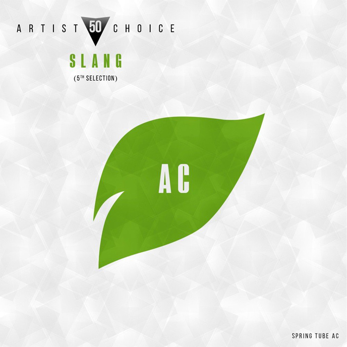 Artist Choice 050. Slang (5th Selection) (unmixed tracks)