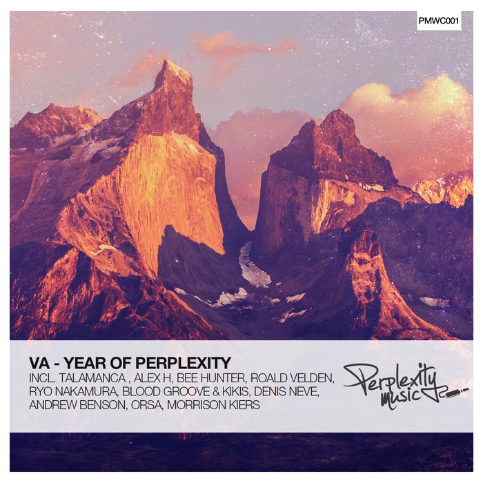 Year Of Perplexity (unmixed tracks) [2015]