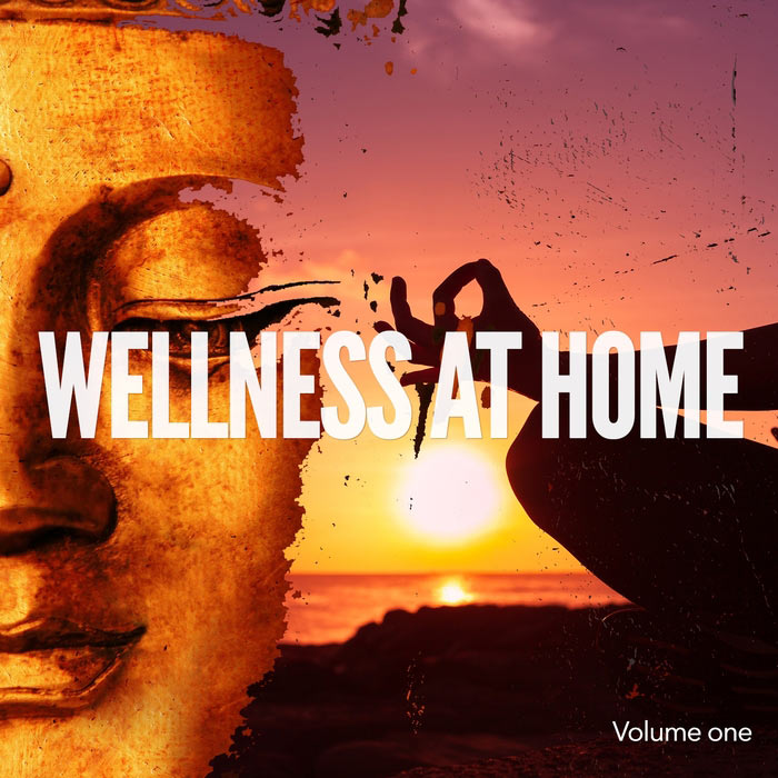 Wellness At Home Vol. 1 (Home Relaxing Feel Good Music) [2016]