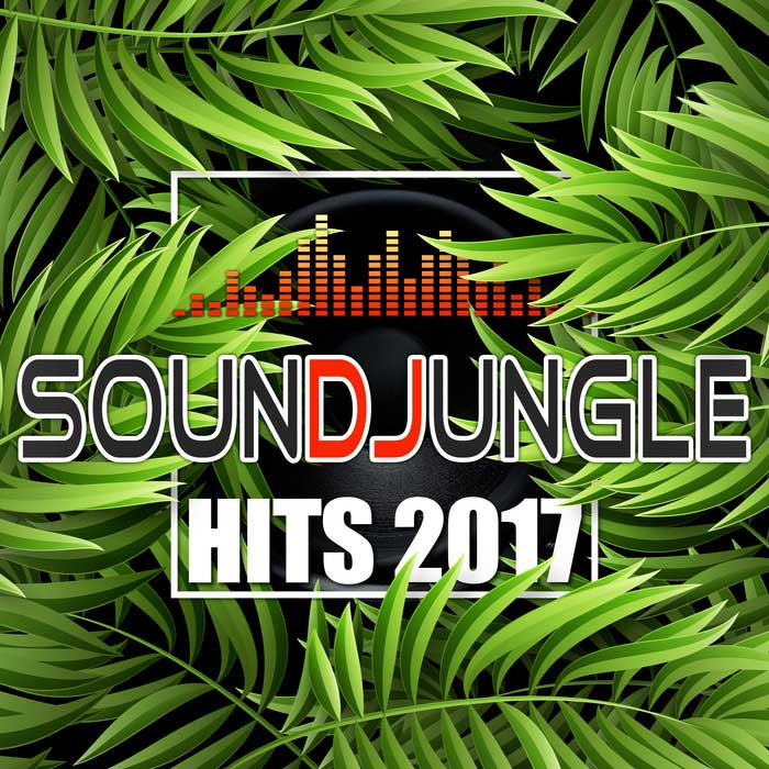 Soundjungle: Hits 2017 [2017]