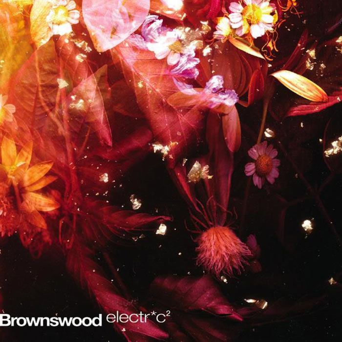 Brownswood Electric 2 [2011]
