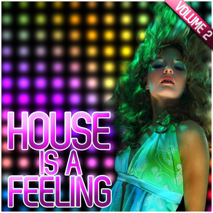 House Is A Feeling (Vol. 2) [2011]
