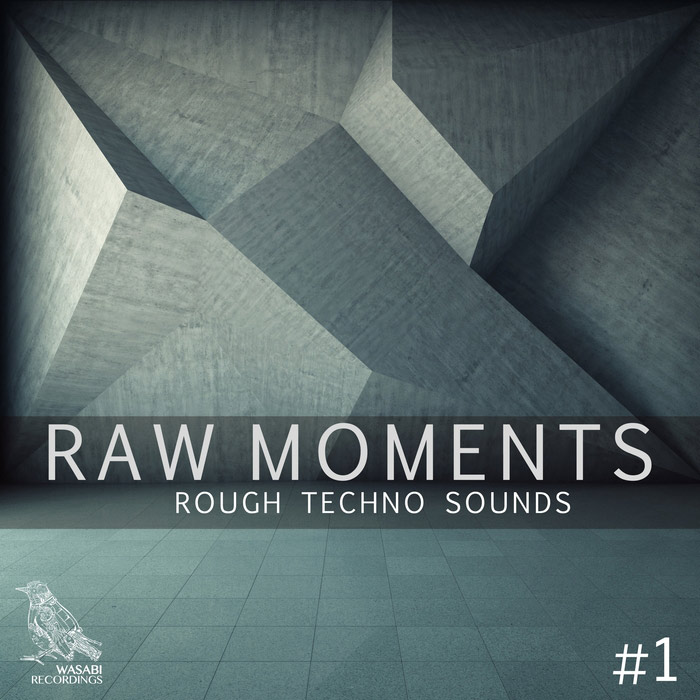 Raw Moments Vol. 1 (Rough Techno Sounds) [2017]