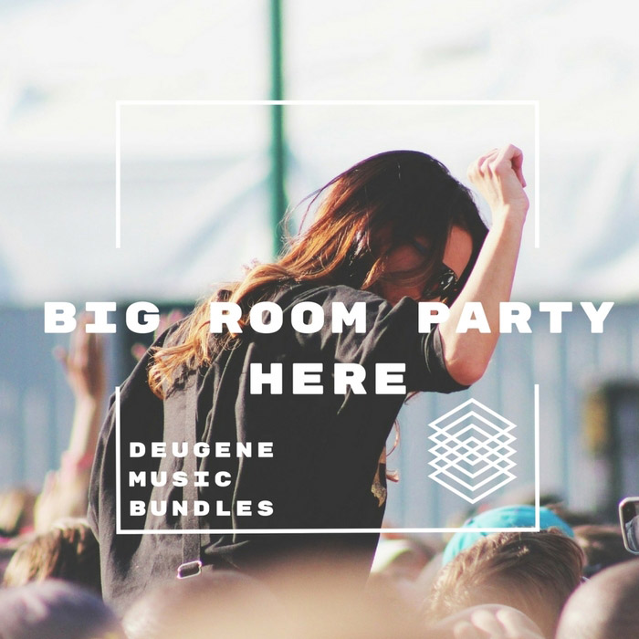 Big Room Party Here [2017]
