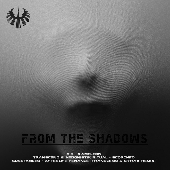 Substanced & Transcend & Hedonistik Ritua & A.B - From The Shadows
