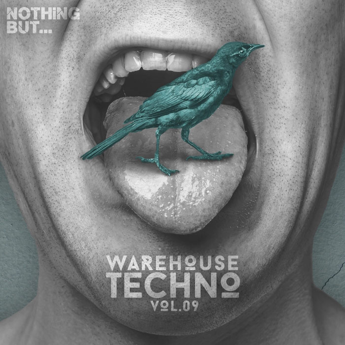 Nothing But... Warehouse Techno (Vol. 9) [2017]