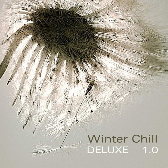 Winter Chill Deluxe 1.0 [2010]