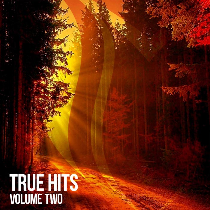 True Hits (Vol. 2) [2018]