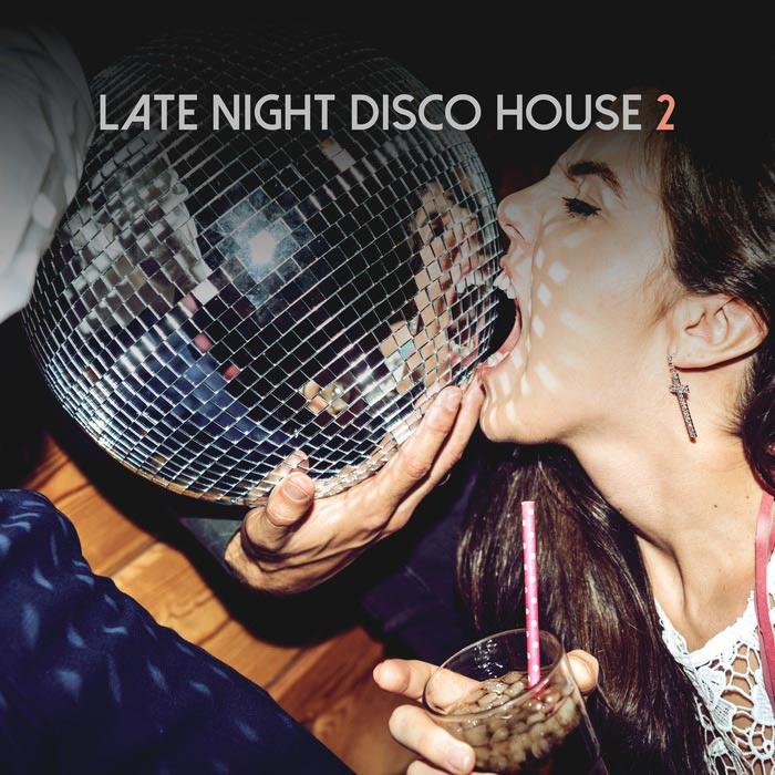 Late Night Disco House (Vol. 2) [2018]
