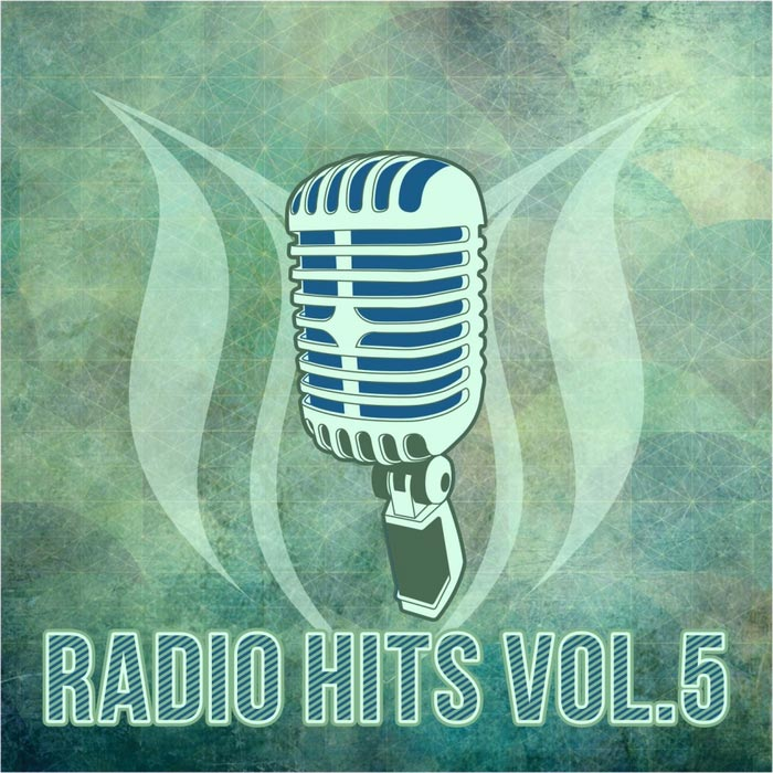 Radio Hits (Vol. 5) [2017]