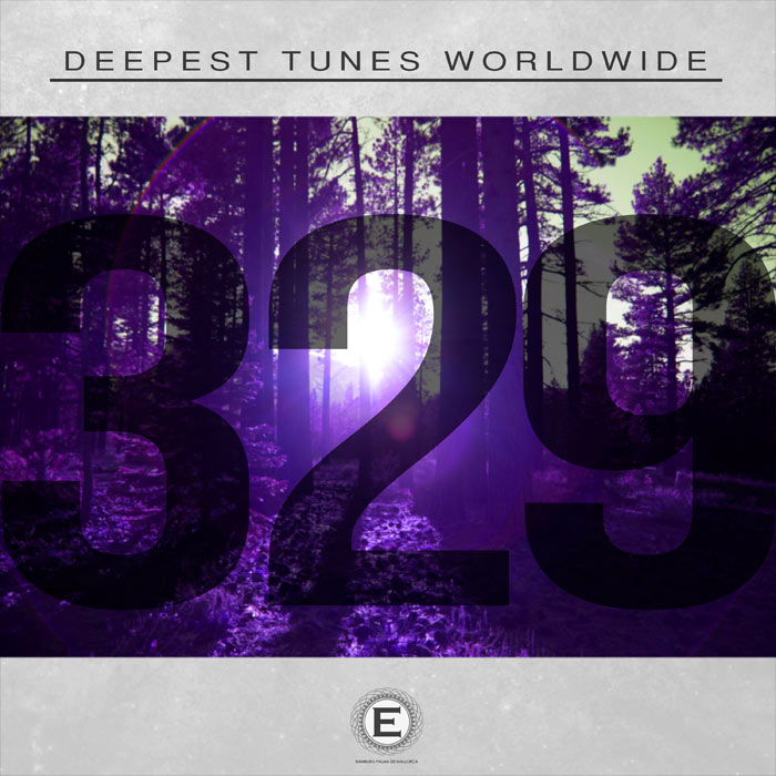 Deepest Tunes Worldwide 329 [2017]