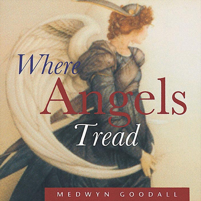 Medwyn Goodall - Where Angels Tread [1996]