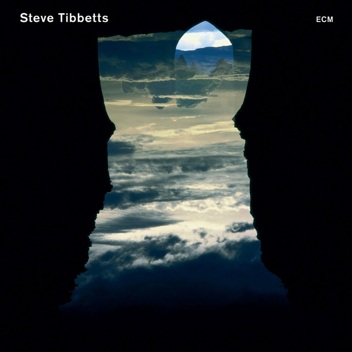Steve Tibbetts - Natural Causes [2010]