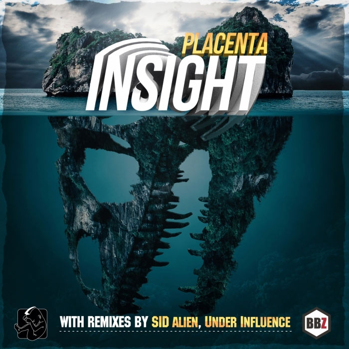 Placenta - Insight