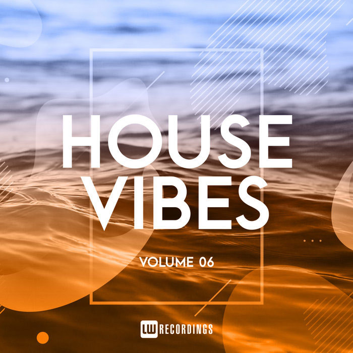 House Vibes (Vol. 06)