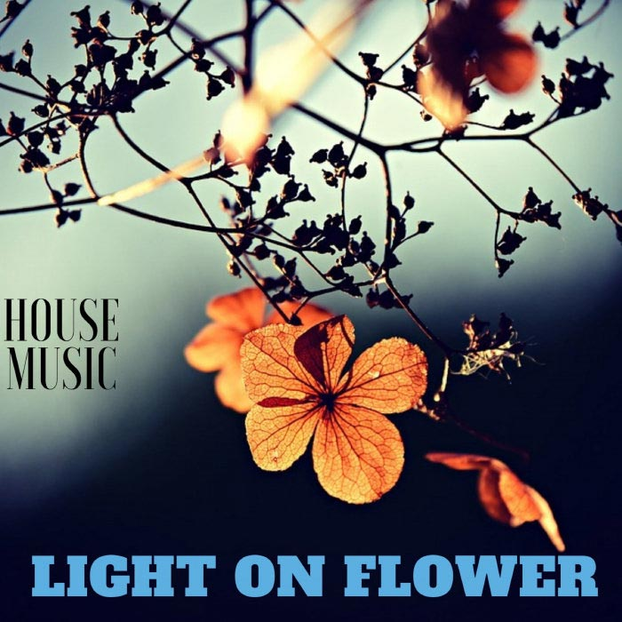 Light On Flower House Music [2019]