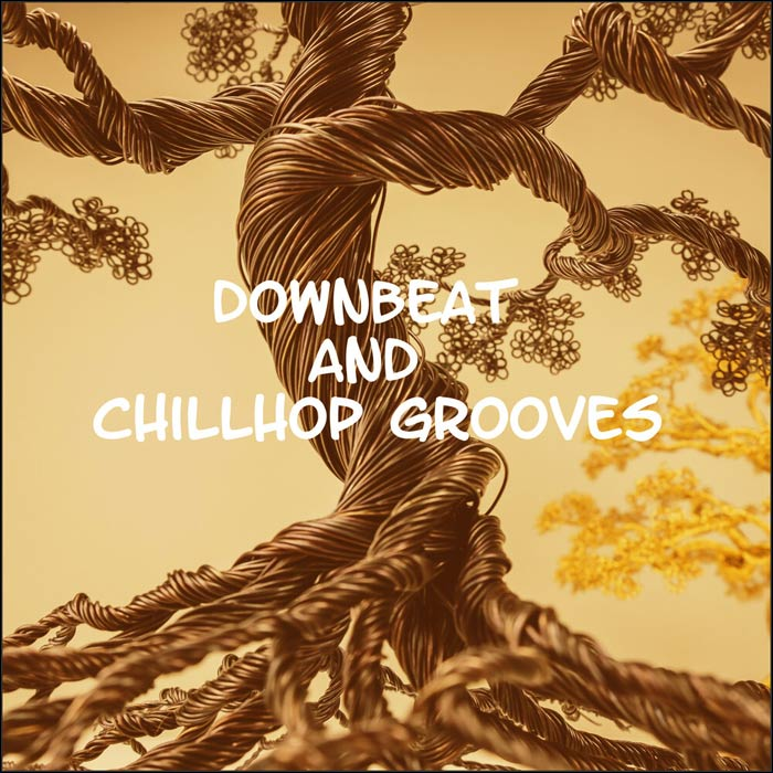Downbeat and Chillhop Grooves [2019]