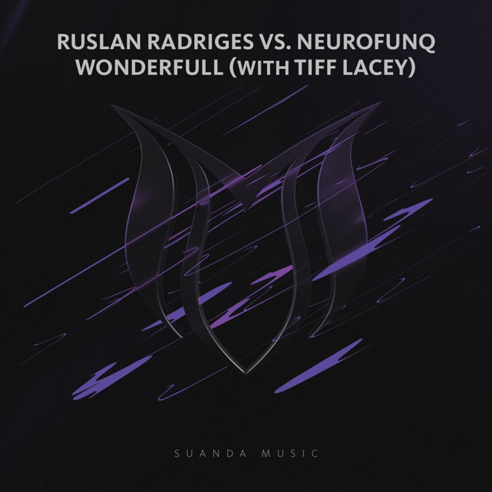 Ruslan Radriges vs Neurofunq & Tiff Lacey - Wonderfull (extended mix)