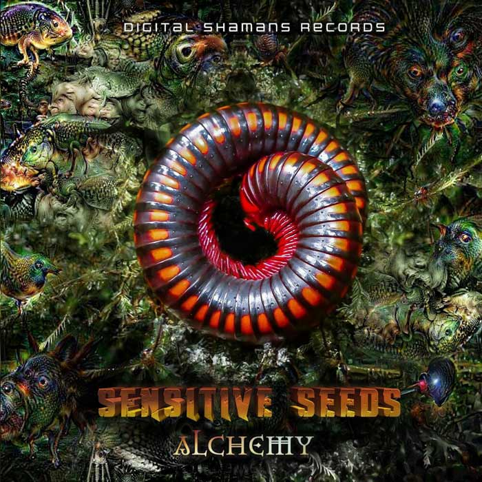 Sensitive Seeds - Alchemy EP [2020]
