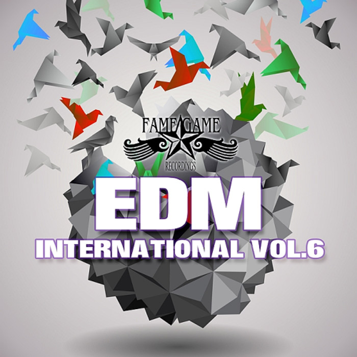 EDM International (Vol. 6) [2017]